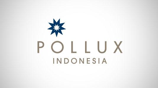 pollux-logo